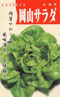 サラダ菜の種【岡山サラダ菜】〔固定種〕 ※無消毒