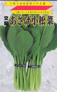 コマツナの種【あさげ小松菜】〔F1〕 ※無消毒