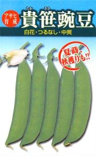 サヤエンドウの種【貴笹】〔固定種〕 ※無消毒