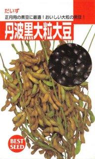 黒エダマメ〜黒ダイズ【丹波黒大豆】〔固定種〕 ※無消毒