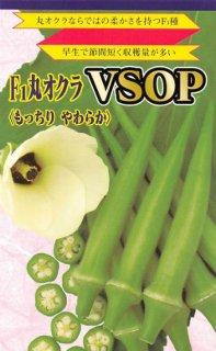 丸オクラ【VSOP】〔F1〕 ※無消毒