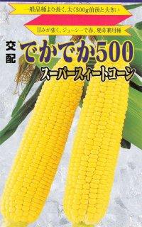 トウモロコシの種【でかでか500】〔F1〕