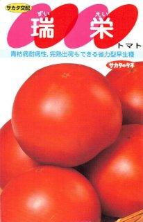 トマトの種【瑞栄】〔F1〕 ※無消毒
