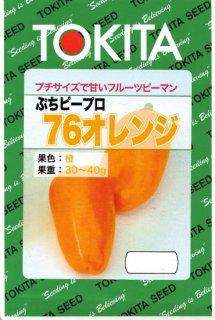 ミニカラーピーマンの種【ぷちピープロ(76オレンジ)】〔F1〕 ※無消毒