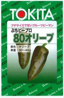 ミニカラーピーマンの種【ぷちピープロ(80オリーブ)】〔F1〕 ※無消毒