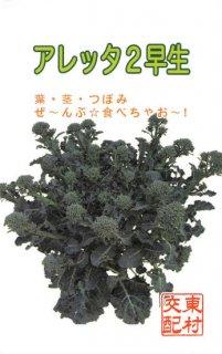 すずなりブロッコリーの種【アレッタ2早生】〔F1〕