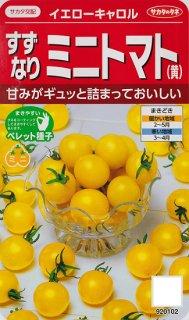 ミニトマトの種【イエローキャロル】〔F1〕