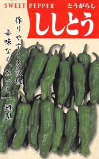 甘トウガラシの種【ししとう】〔固定種〕 ※無消毒