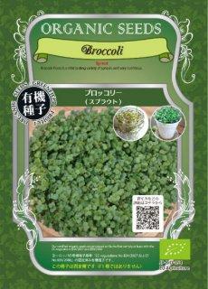 スプラウト(ブロッコリー)の種〔有機種子・固定種〕 ※無消毒