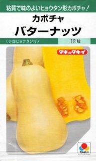 カボチャの種【バターナッツ】〔固定種〕 ※無消毒