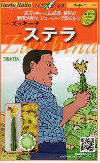 ズッキーニの種【ステラ】〔固定種〕