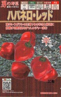 トウガラシの種【ハバネロ レッド】〔固定種〕 ※無消毒
