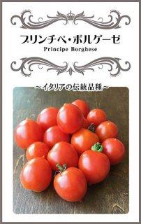 ミニトマトの種【プリンチペ・ボルゲーゼ】〔固定種〕 ※無消毒