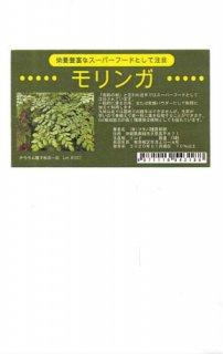 モリンガの種〔F1〕