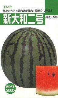 中玉スイカの種【新大和2号】〔固定種〕