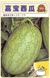 小玉スイカの種【嘉宝西瓜】〔固定種〕