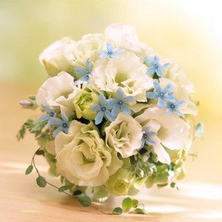 (プリザ)白とブルー小花のブーケ