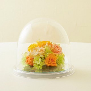 プリザーブドフラワードームアレンジ(イエロー系)L