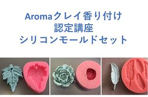 <img class='new_mark_img1' src='https://img.shop-pro.jp/img/new/icons2.gif' style='border:none;display:inline;margin:0px;padding:0px;width:auto;' />Aromaクレイ香り付け認定講座  シリコンモールドセット