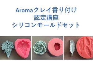 Aromaクレイ香り付け認定講座  シリコンモールドセット
