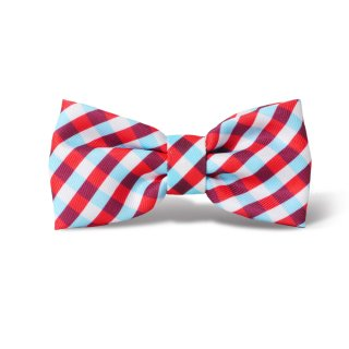 <img class='new_mark_img1' src='//img.shop-pro.jp/img/new/icons5.gif' style='border:none;display:inline;margin:0px;padding:0px;width:auto;' />GUMMY BOWTIE/ZEE.DOG(グミー・ボウタイ/ジー・ドッグ)