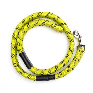 <img class='new_mark_img1' src='https://img.shop-pro.jp/img/new/icons5.gif' style='border:none;display:inline;margin:0px;padding:0px;width:auto;' />LEADER-OF-THE-PACK LEASH YELLOW / ROVERLUND