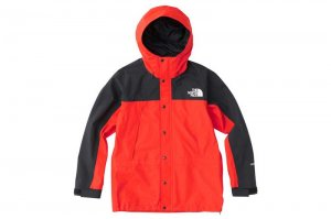 THE NORTH FACE MOUNTAIN LIGHT JACKET - FR