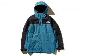 THE NORTH FACE Mountain Light Jacket - SM