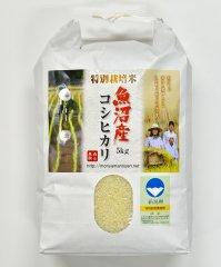 森山農園特別栽培米魚沼産コシヒカリ(新潟県認証)5kg