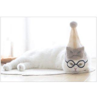 100% Cat hair ポストカード PB-475