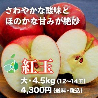 紅玉(りんご)4.5kg(大・12〜14玉)信州産