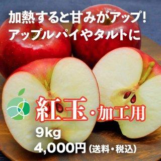 紅玉(りんご)9kg 加工用 信州産