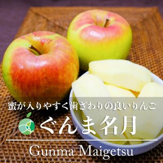 ぐんま名月(りんご)贈答用 10kg(20〜30玉)長野県産