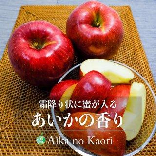 あいかの香り(りんご)贈答用 5kg(中・13〜16玉)長野県産