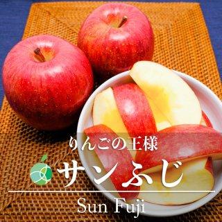 サンふじ(りんご)贈答用 5kg(大・10〜12玉)長野県産