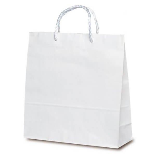 No.1638 T-6 PP紐手提袋 白無地 【200枚入り】が安い! 業務用品の大量購入なら激安通販びひん.shop。【法人なら掛け払い可能】【最短翌日お届け】【大口発注値引き致します】