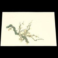 遊膳 NW-03 抗菌尺三まっと日本の四季 梅 100枚入