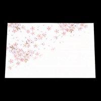 遊膳 HM-1 抗菌尺三まっと花雅 桜 100枚入
