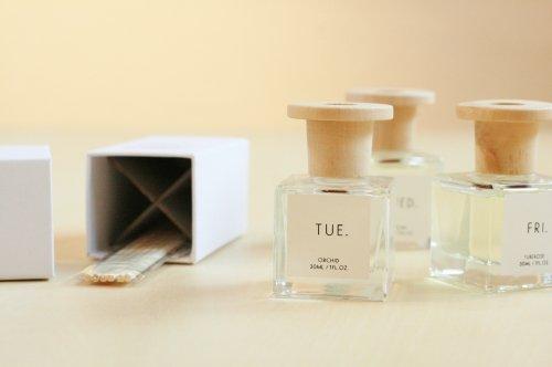 〈PUEBCO〉 Omnibus Fragrance Diffuser