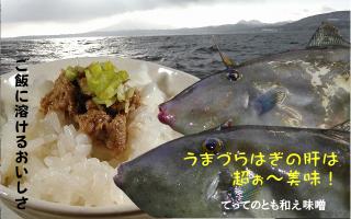 ウマヅラハギ肝味噌「てってのとも和え味噌」深浦町特産認定商品