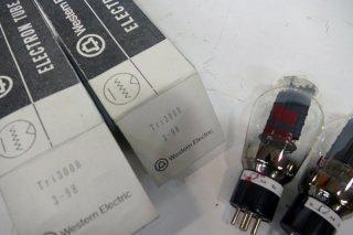 TRI 300B 2本 [20634]