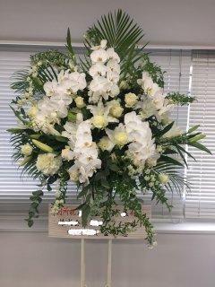胡蝶蘭を使った白系豪華スタンド花1段