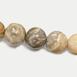 フォシルコーラル (化石珊瑚) ラウンド12mm 【2個】