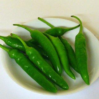 青唐辛子(韓国産)50g|メキシコ料理食材