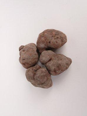 丹波篠山産 山の芋 2kg【等級:優】(5〜9玉入り)