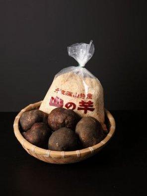丹波篠山産 山の芋 1kg 【等級:上級品 特秀】(3玉入り)