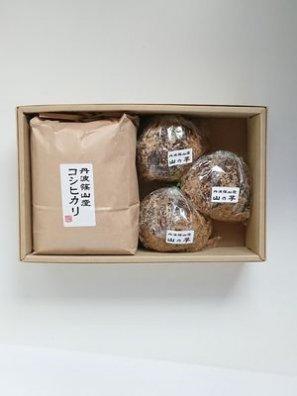 《ギフト用》とろろごはんセット(丹波篠山産 山の芋3個&減農薬コシヒカリ1.8kg)