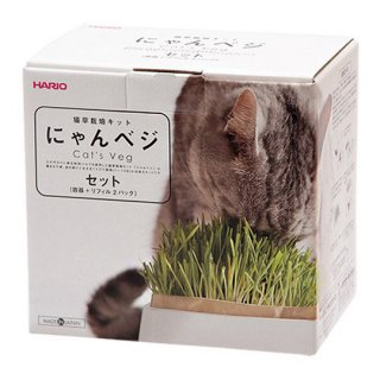 猫草栽培キット にゃんベジセット