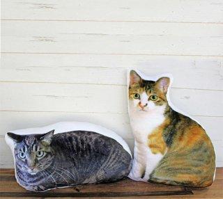 【チャリティグッズ】猫スタッフがモデルのクッション 2タイプ