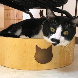 バリバリボウル 猫柄 丸型爪とぎベッド